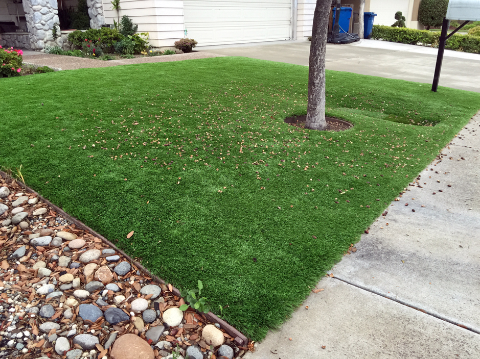 Fake Grass Lakewood California Lawn And Landscape Front Yard