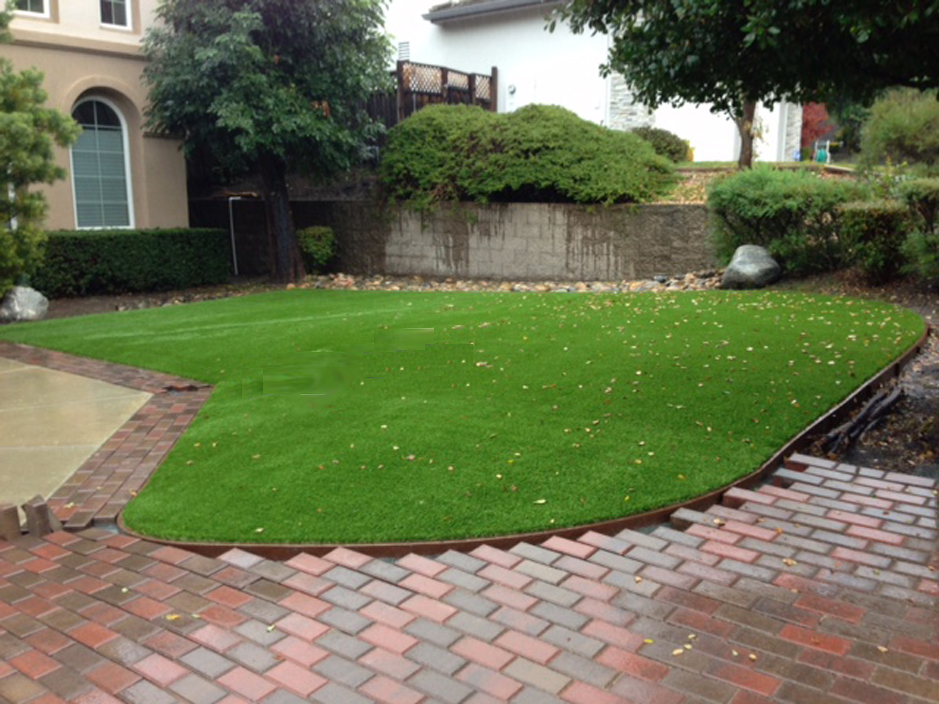 Fake Turf Aguanga California Landscape Design Small Front Yard
