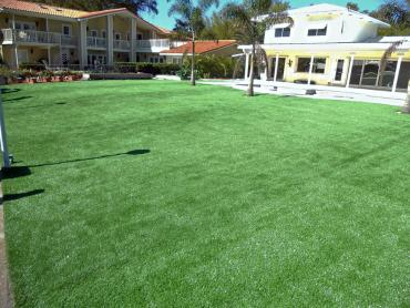 Artificial Grass Photos: Artificial Lawn Desert View Highlands, California Garden Ideas, Natural Swimming Pools