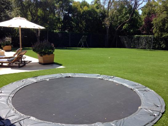 Artificial Turf Cost Highland, California City Landscape, Swimming Pools artificial grass