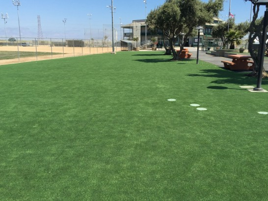 Fake Grass Carpet Nuevo, California Lawns, Recreational Areas artificial grass