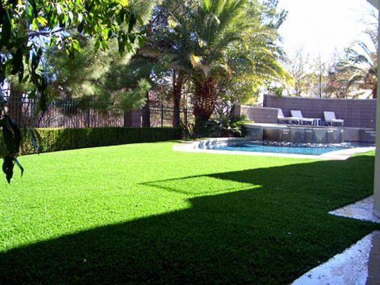 Fake Grass Oak Glen, California Gardeners, Pool Designs artificial grass