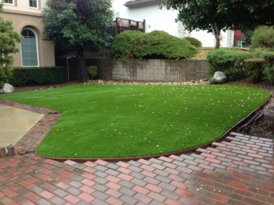 Fake Turf Aguanga, California Landscape Design, Small Front Yard Landscaping artificial grass