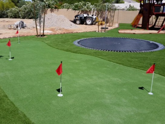 Fake Turf Pinon Hills, California Indoor Putting Greens, Backyard Designs artificial grass