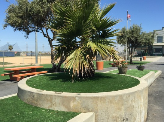 Artificial Grass Photos: Faux Grass Loma Linda, California, Parks