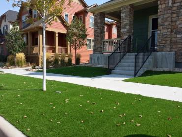 Installing Artificial Grass Artesia, California Garden Ideas, Front Yard Ideas artificial grass