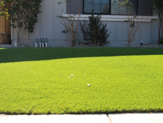 Artificial Grass Photos: Lawn Services Culver City, California Landscape Photos, Front Yard Landscape Ideas