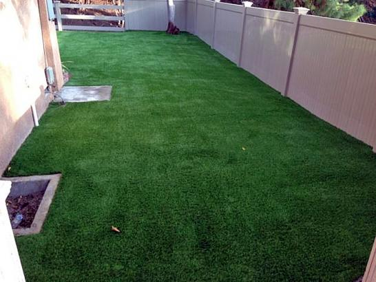Outdoor Carpet Tustin, California Pictures Of Dogs, Backyard Makeover artificial grass