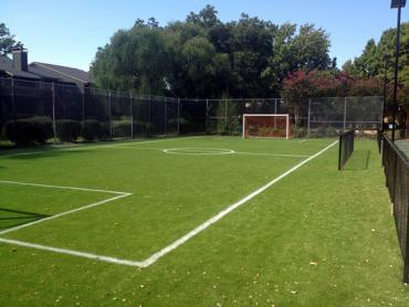 Artificial Grass Photos: Synthetic Grass Cost Mission Viejo, California Red Turf, Commercial Landscape