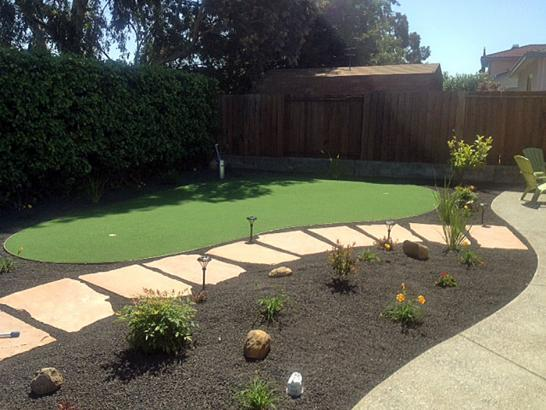 Artificial Grass Photos: Synthetic Turf Supplier Agoura, California Indoor Putting Green, Backyard Landscaping