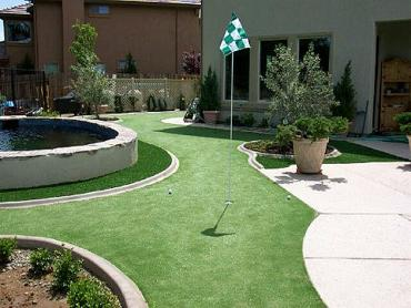 Artificial Grass Photos: Turf Grass Signal Hill, California Indoor Putting Green, Backyard Ideas
